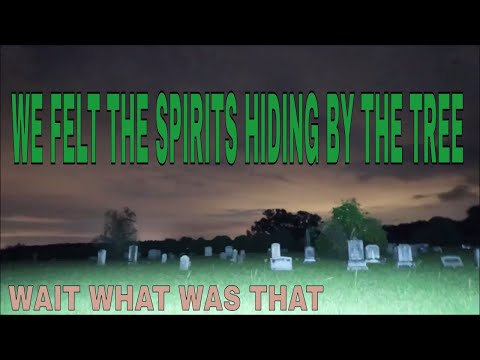 WOW THE SPIRITS WERE  HIDING BY THE TREE