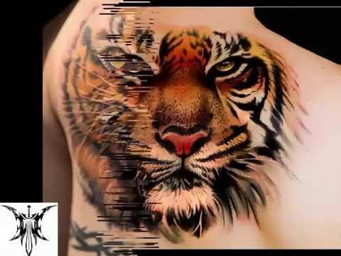 8368e84c42c7a Tattoo Designs | Beautiful Tiger Tattoo Ideas - YouTube