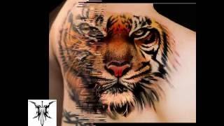Tattoo Designs   Beautiful Tiger Tattoo Ideas