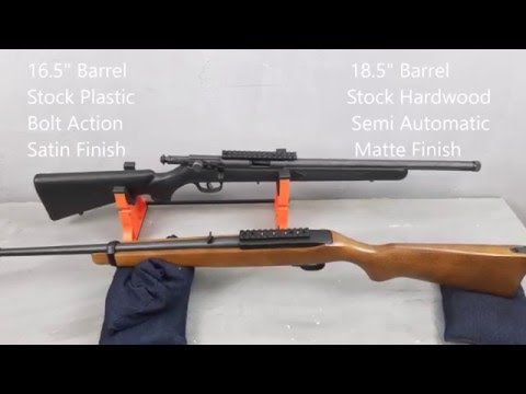 Before You Buy A CZ Or Anschutz Watch This Video Ruger 10/22 And Savage FV-SR Review