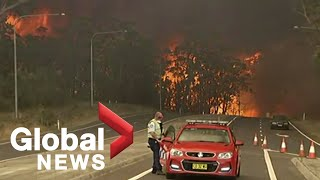 Deaths, losses mounting in Australia's disastrous bush fires