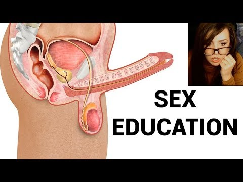 sex education first time