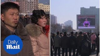 Pyongyang's citizens happy with North Korea's rocket launch - Daily Mail