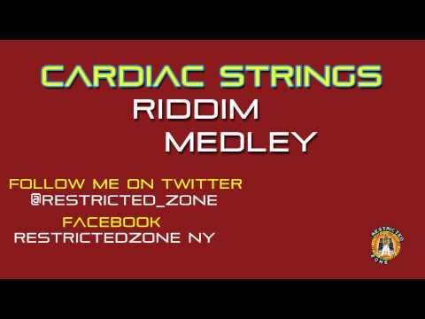 CARDIAC STRINGS RIDDIM MIX - REGGAE MEDLEY - SEPTEMBER 2011