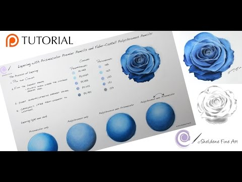 TUTORIAL #6 - 1 Hour TUTORIAL: How to layer using colored pencils. (Prismacolor and Polychromos)6