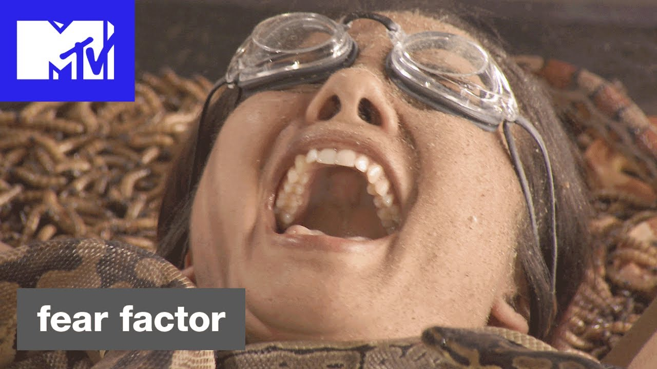 Fear Factor Returns to MTV with 'Custom-Created' Millennial