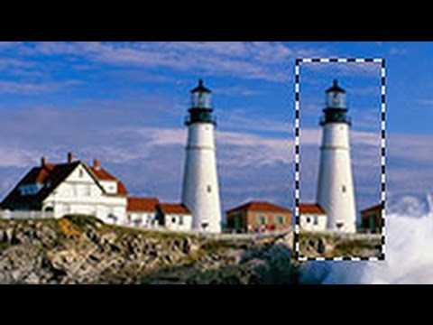 Adobe Photoshop - Действия с выделенной областью