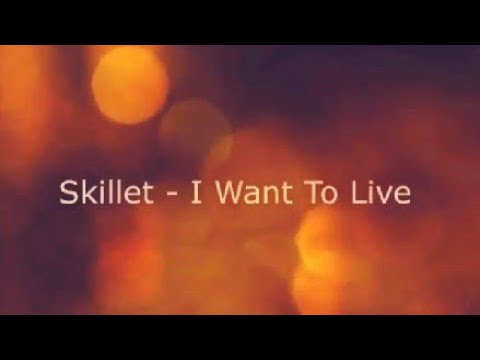 Skillet I Want To Live Karaoke With Lyrics Background Music By