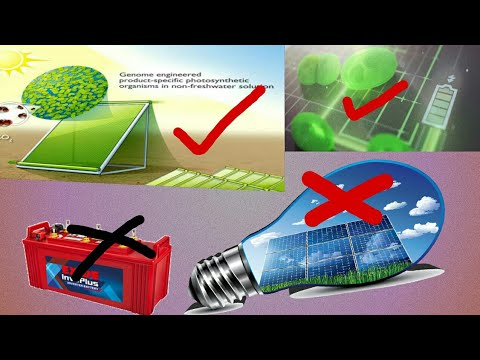 How Work Bio Solar Penal Hindi/Urdu
