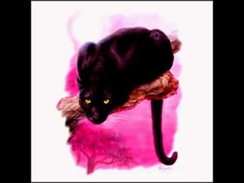Евгения Феофилакт -черная пантера