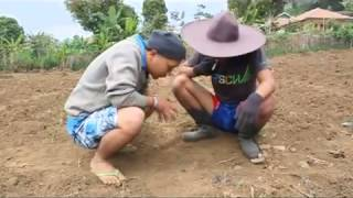 Bodoran Kang Ibing  Tikotok flv   YouTube