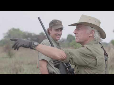Angry Cape Buffalo of Africa | Kryptek Hunts