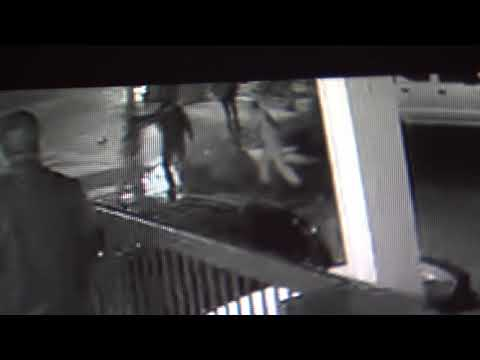 Surveillance video: Fight outside Pho Anh Dao restaurnt in Alameda