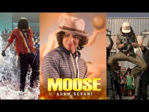 Step Up MOOSE Tribute