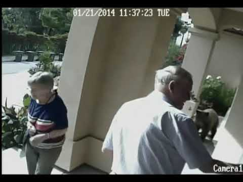 Elderly couple fail to notice a bear in their property.