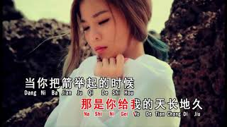 飞鸟与射手 ~ 依文(MV)
