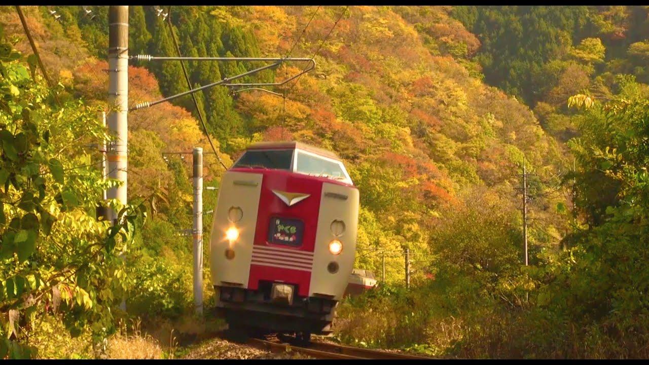 JR西日本特急やくも・秋の伯備線 2020年11月8日