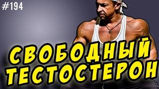 видео норма гормона тестостерона