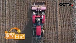 《攻坚日记》 20200603 武功亮的梦(3)|CCTV农业