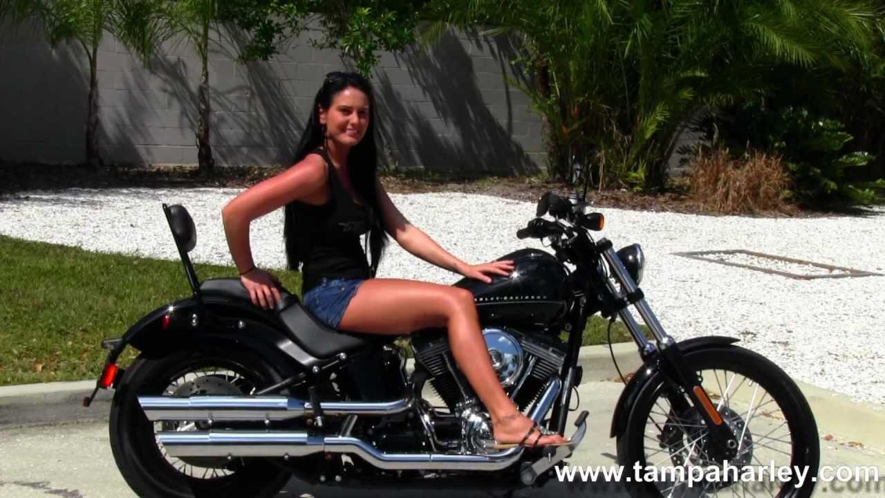 Harley Davidson Softail Blackline For Sale