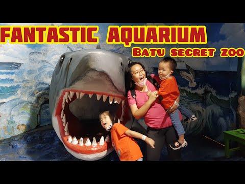 Batu Secret Zoo | Aquarium Jatim Park 2 | Batu Malang
