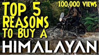 Top 5 Reasons to Buy a Royal Enfield Himalayan | Royal Enfield USA | Ol' Man Ronin (S1,E45)