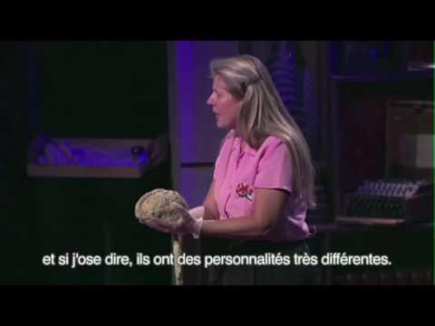 Jill Bolte Taylor, sous-titre français 1/2