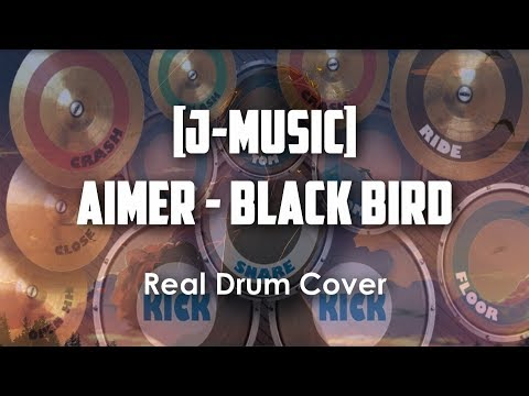 【J-MUSIC】Black Bird By Aimer   Real Drum Cover