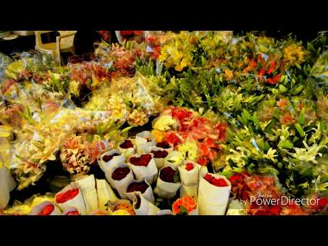 Wholesale Artificial Flowers Market in Delhi|| hindi