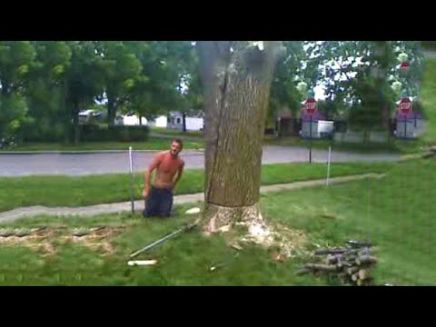 Funniest Tree Cutting Fails 9