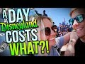 HOW MUCH DOES A DAY AT DISNEYLAND COST? || Travel Tips & Tricks for Disneyland!