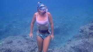 Hawaii Ohau Adventure - North shore three tables free dive