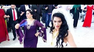 Kadir Alisa Hochzeit Part 5 Sänger Said Hassan Terzan Television WER DENN SONST