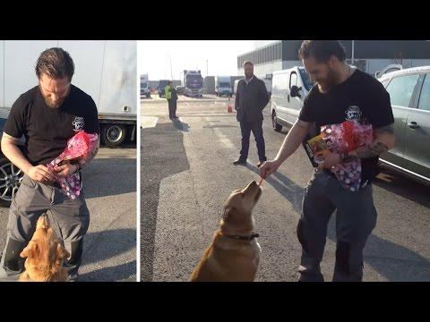 Tom Hardy Fan Brings Treats For His Dog