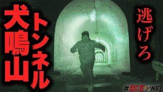 心霊|機材トラブル発生!犬鳴山トンネルに独りで行ったら後悔した|オカルト部