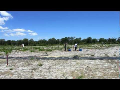 Perth Field and Rifle Club. Flush