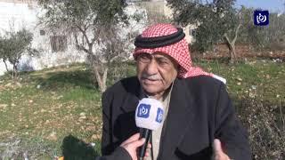 اعتداء على أشجار في إربد ومطالبات بحماية الثروة الحرجية (26/1/2020)