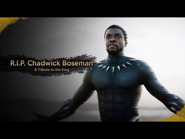 R.I.P. Chadwick Boseman - A Tribute to the King
