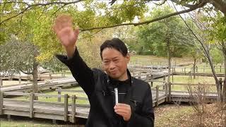 【今日の出来事と人物・用語集】いい夫婦(1122)の日。<新井白石・シ...