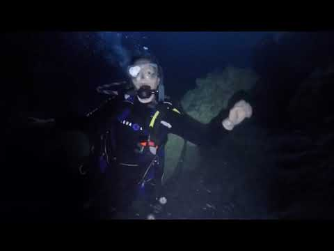 ADI Dives | Devil's Den Diver Training, March 2, 2018