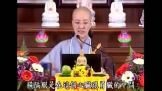 {淨宗齋戒學會}釋仁敬法師 瑜珈拜佛的方法與修行之道2 2 thumbnail