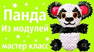 Панда | Модульное Оригами | Мастер класс