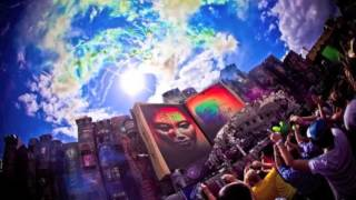 Tomorrowland 2012  What are you waiting for VANRAY MIX
