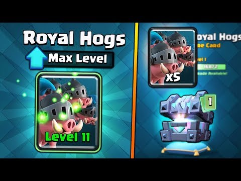 NEW FULLY MAXED ROYAL HOGS UPGRADE! | Clash Royale | CHEST OPENING & BEST MAX ROYAL HOG DECK!