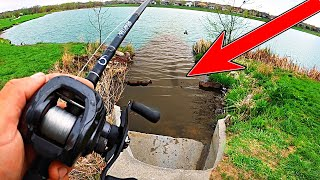 Searching for GIANT Bass in Neighborhood Ponds!! (Spring Bank Fishing)