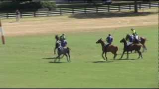 Tony Vita gray horse.mov