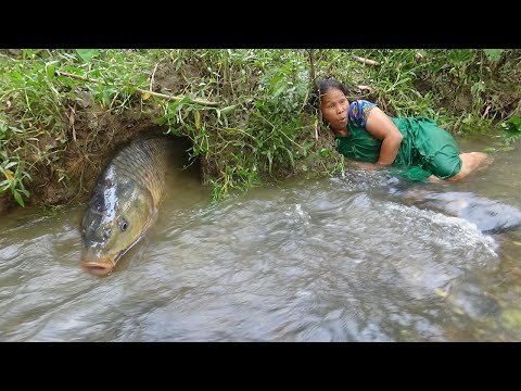 Survival skills with Primitive life: Build fish trap from deep hole & Cooking fish Eating delicious