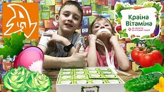 Краина витамина. Супер набор с коробочками. Обзор. Country vitamins. Super set with boxes. Overview.