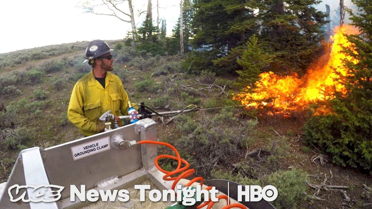 Prescribed Burning & Trump's Social Media Summit: VICE News Tonight Full Episode