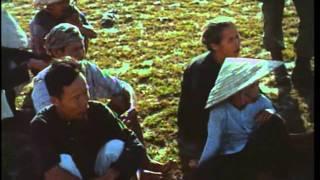 Phim Viet Nam   Chiến trường Việt Nam P3 Chiến lược tìm và diệt   Chien truong Viet Nam P3 Chien luoc tim va diet